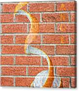 Vitamin C Wall Canvas Print