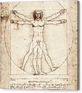 Vitruvian Man. 1492. Renaissance Art Canvas Print