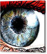 Vivid Vision  Canvas Print