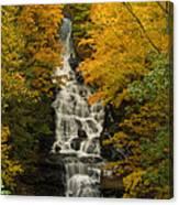 Vogal State Park Canvas Print