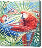 Voices Of The Amazon Canvas Print