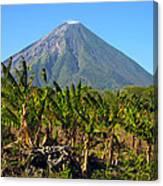 Volcan Concepcion Nicaragua Canvas Print