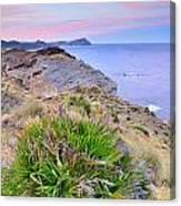 Volcanic Desert At Sunset Canvas Print