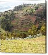 Volcano Farming Canvas Print