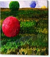 W061814 Canvas Print