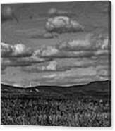 Wachusett Mountain Bw Canvas Print