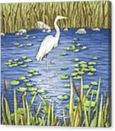 Wading And Watching Canvas Print