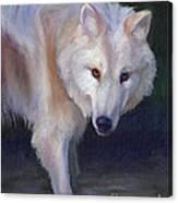 Wading Wolf Canvas Print