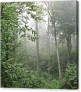 Waft Of Mist - Shenandoah Park Canvas Print