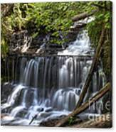 Wagner Falls Canvas Print
