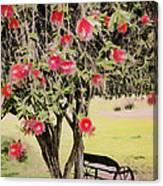 Wagon Wheel Bench Canvas Print