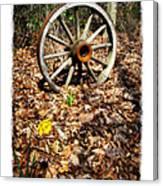 Wagon Wheel Daffodil Canvas Print
