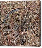 Wagon Wheel_7438 Canvas Print
