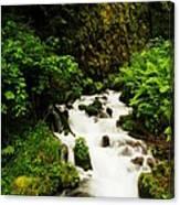 Wahkeena Creek Canvas Print