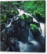 Wahkeenah Falls Columbia River Gorge Nsa Oregon Canvas Print