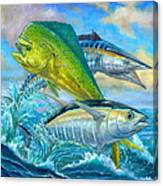Wahoo Mahi Mahi And Tuna Canvas Print