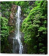 Waikani Falls At Wailua Maui Hawaii Canvas Print