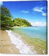 Waikoko Beach Shore Canvas Print