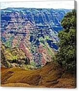 Waimea Canyon - Kauai Canvas Print