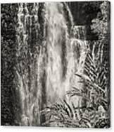 Wailua Waterfall 3 Canvas Print