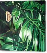Waipeo Green Canvas Print