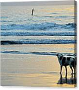 Wait For You Canvas Print