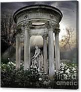 Wake Up My Sleepy White Roses - Sunlight Version Canvas Print