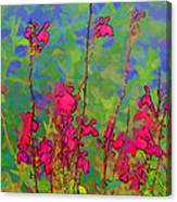 Wake Up Smell The Flowers Canvas Print
