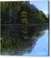 Wakulla Skimmers Canvas Print