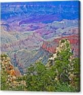 Walhala Overlook On North Rim Of Grand Canyon-arizona  Canvas Print