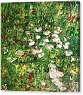 Walk Again...the Same Path..number 2.. Canvas Print