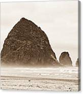 Walk Along The Ocean Canvas Print