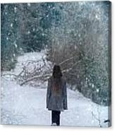 Walk In The Snow Canvas Print