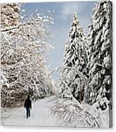 Walk In The Winterly Forest With Lots Of Snow Canvas Print