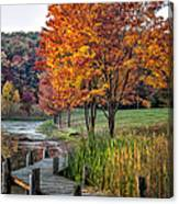Walk Into Fall Canvas Print