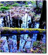 Walk Right Into The Nature's Fairytale With Me  Canvas Print