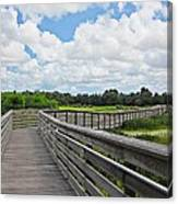 Walk On Wetlands Canvas Print