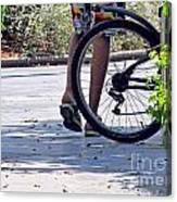 Walking And Biking Canvas Print