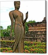 Walking Buddha Image In Wat Sa Si In Sukhothai Historical Park-t Canvas Print