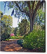 Walking In A Garden Canvas Print