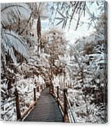 Walking Into The Infrared Jungle 3 Canvas Print