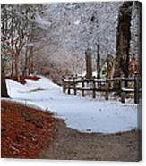 Walking Into Winter Canvas Print