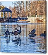 Walking On Thin Ice Canvas Print