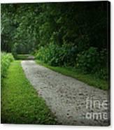 Walking Path Canvas Print