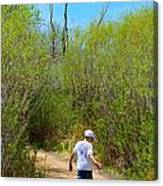 Walking The Ox Bow 2 Canvas Print