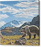 Walking The Ridge - Grizzly Canvas Print