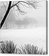Walking Through A Winter Wonderland Canvas Print