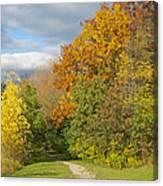 Walking Through Autumn Canvas Print