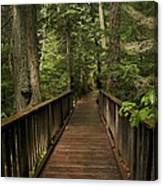 Walkway Into Paradise Canvas Print