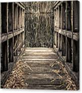 Walkway Out Canvas Print